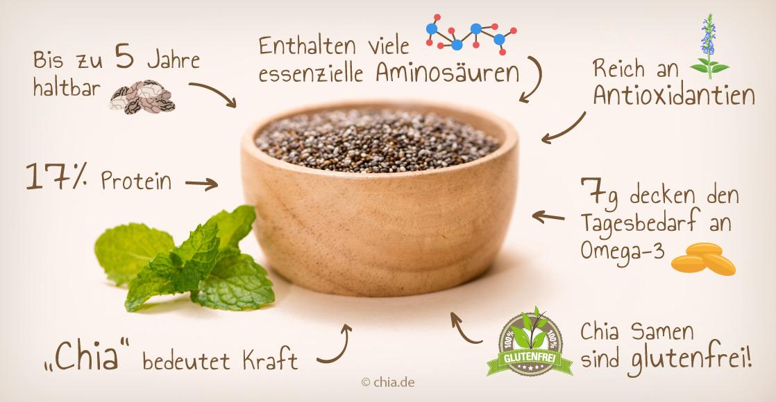Alles Wichtige über Chia Samen Rezepte Nährwerte Gesundheit